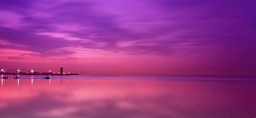 purple-sea-38383]