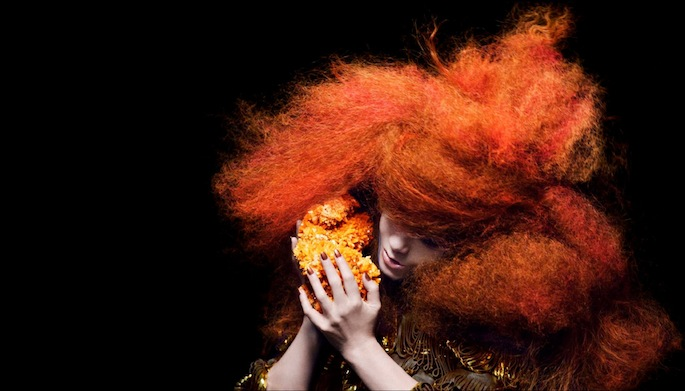 Björk's Kickstarter cancelled after reaching just 4% of goal