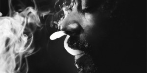 Snoop Lion&#8217;s <em>Reincarnated</em> gets cover art and tracklist