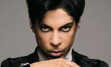 prince-1118-365x220.jpg