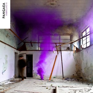 pangaea-fabric-mix-11.2013