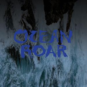 29OceanRoar