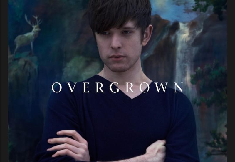 Overgrown--art-2.2013