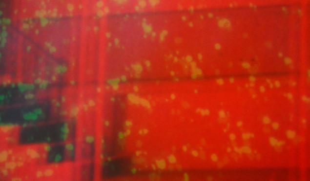 Napalm Death's Nicholas Bullen announces debut LP, Component Fixations