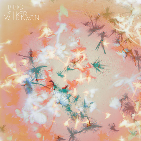 Warp dreamer Bibio announces garden-inspired new album Silver Wilkinson
