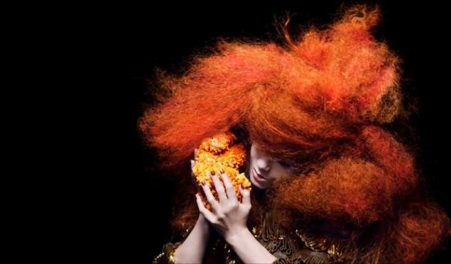 Björk's Kickstarter cancelled after reaching just 4% of goal