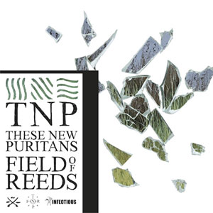 these-new-puritans-field-of-reeds fact review - 7.25.2013