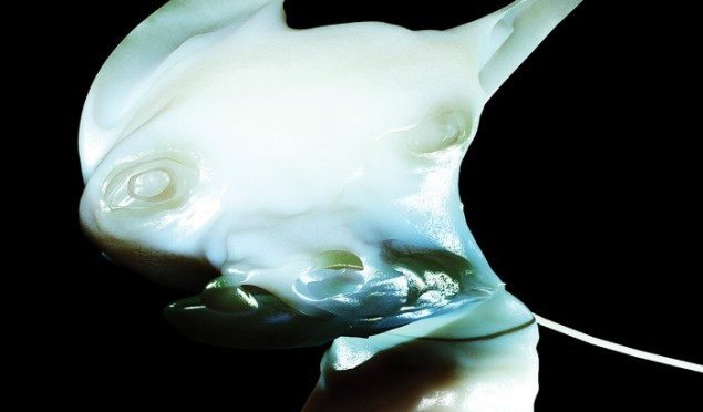 Arca drops deluxe digital edition of Xen, announces US and Europe dates
