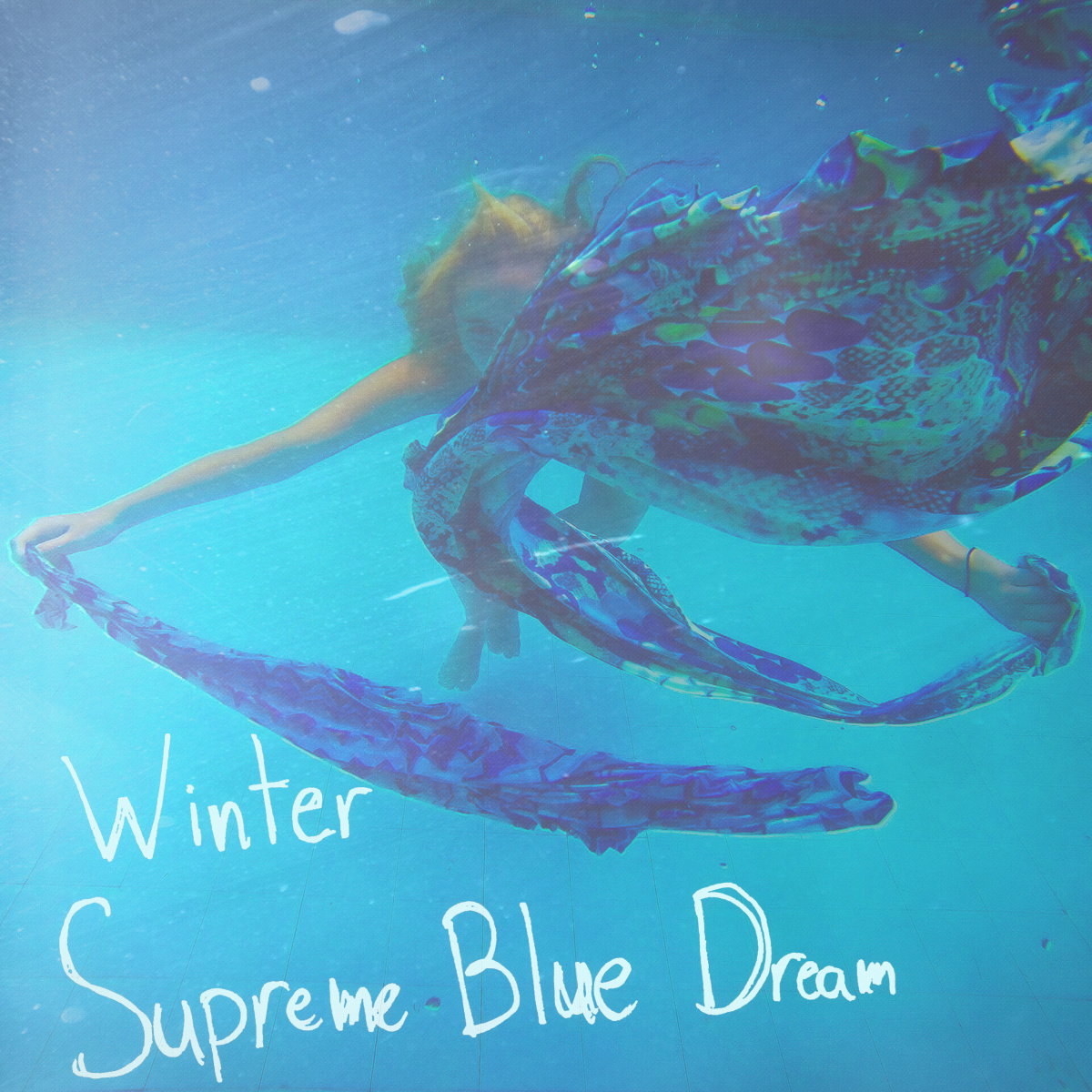 Winter - Blue Dream Supreme