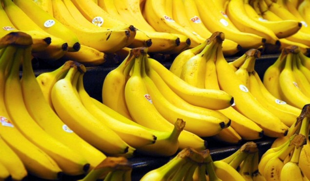 €15 million of cocaine found in Aldi bananas
