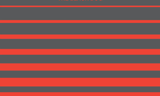UK techno trio The Black Dog announce new album, Neither/Neither