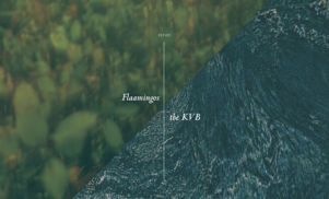 Flaamingos enlist Berlin duo The KVB for split EP on felte, listen now
