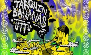 Grab a weird bassline banger from Tarquin courtesy of UTTU