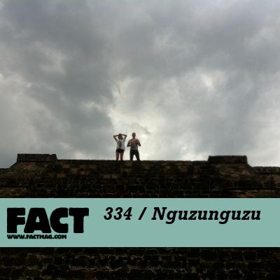 FACT mix: Nguzunguzu