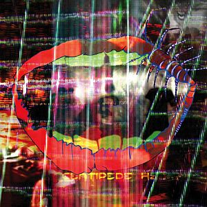 Animal Collective - Centipede Hz FACT review