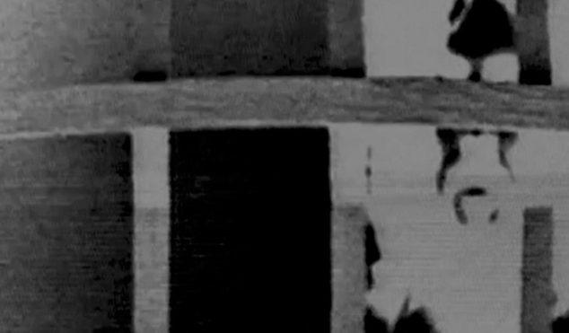 Hear long-awaited new Godflesh track 'Ringer'