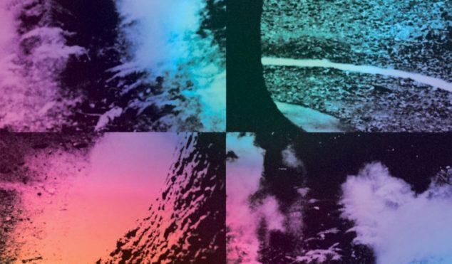 Wysing Forest