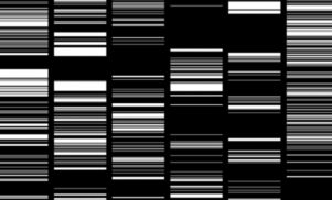 Japanese digital artist Ryoji Ikeda's visuals to be screened across Times Square throughout October