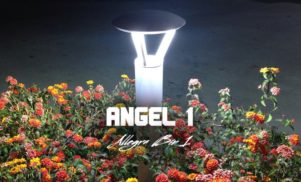 Hear Angel 1's incredible plastic fantasia Allegra Bin 1 for 1080p