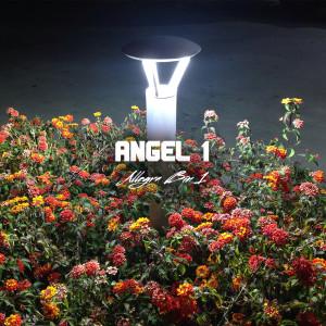41Angel1