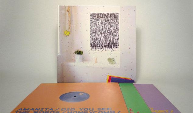 Animal Collective announce triple-vinyl Live at 9:30 box set