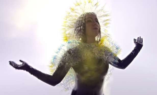 Björk calls for action to save Iceland's untouched nature