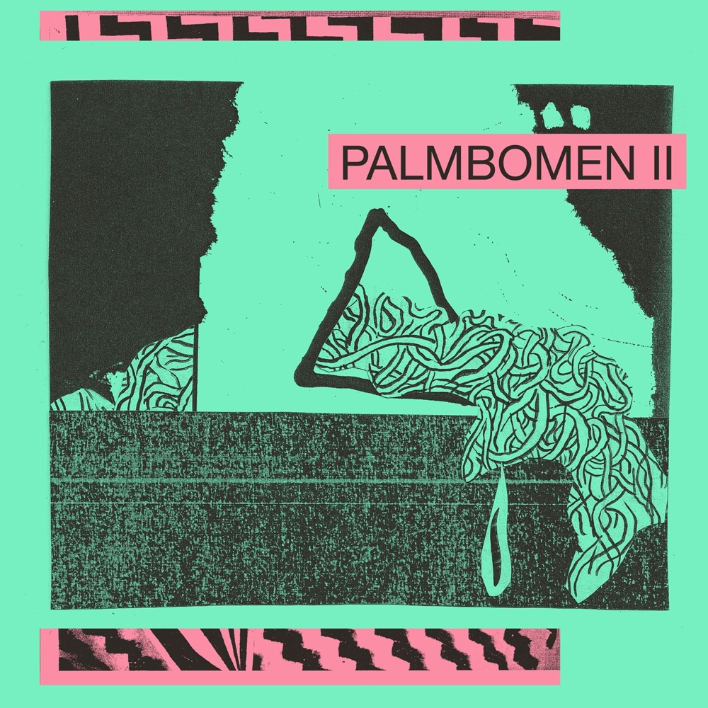 palmbomen-12.2.2015