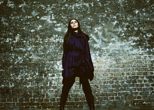 D.C. politicians and nonprofit respond to PJ Harvey for 'The Community of Hope' lyrics