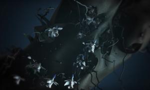 Blood Orange collaborator Kelsey Lu debuts video for 'Empathy'