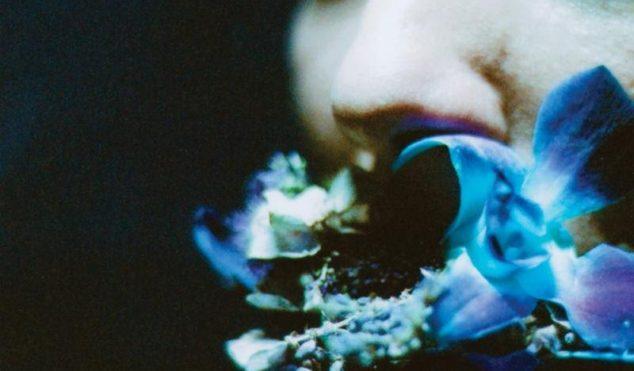 Circuit Des Yeux announces new album Reaching For Indigo