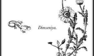 Aïsha Devi, RAMZI, Bergsonist and more featured on Dimseniya compilation