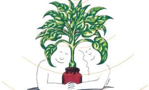 Sacred Bones to re-release Mort Garson's cult album Mother Earth's Plantasia