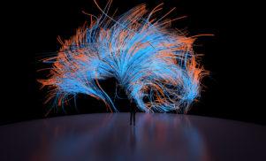 Aurora Cerebralis