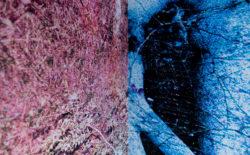 Quentin Lacombe – Event Horizon