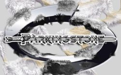ParkingStone logo