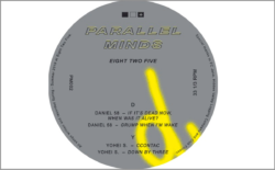 Picture of Parallel Minds 12""
