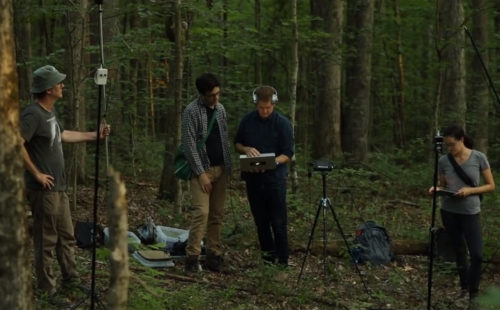 Field Works turns the echolocations of endangered bats into ambient on Ultrasonic