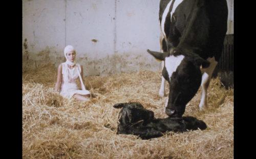 Marina Herlop marries Carnatic rhythms with cow births in 'miu'